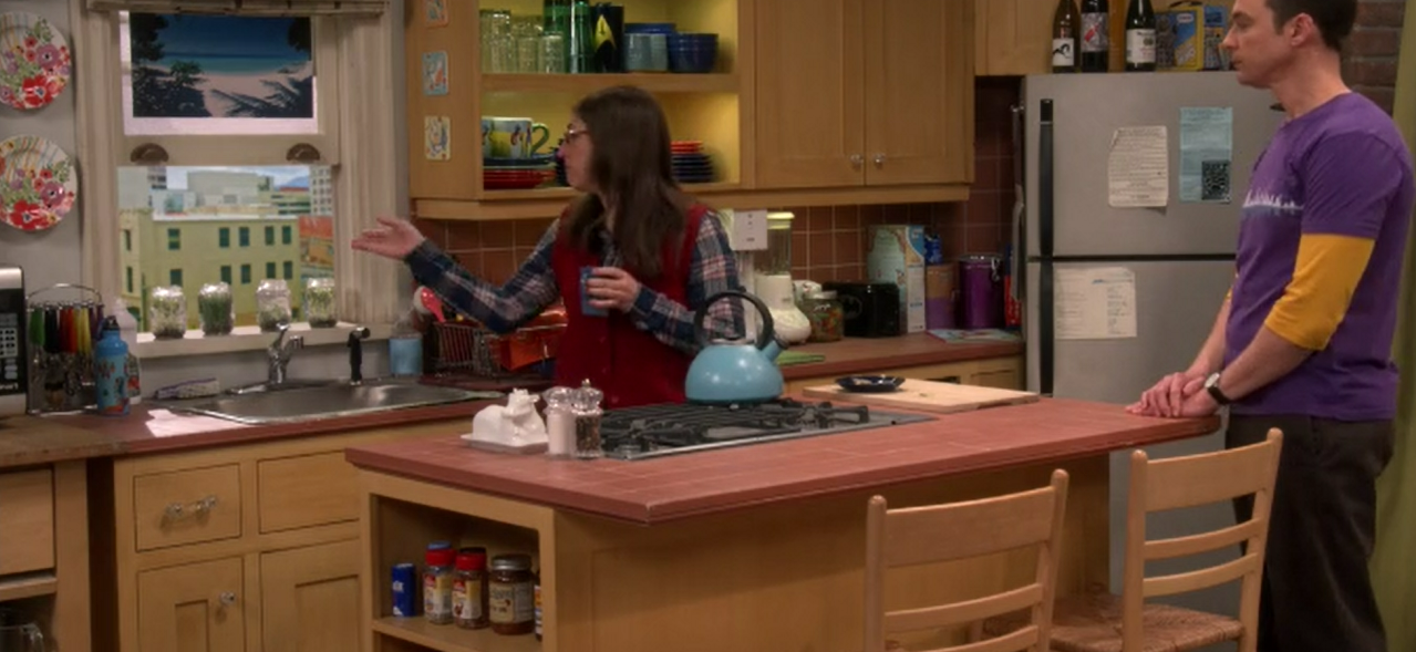 sheldon-amy-apartment-kitchen