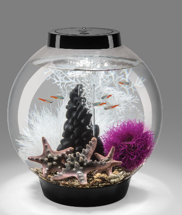 biorb-4-gallon-classic-aquarium-tank