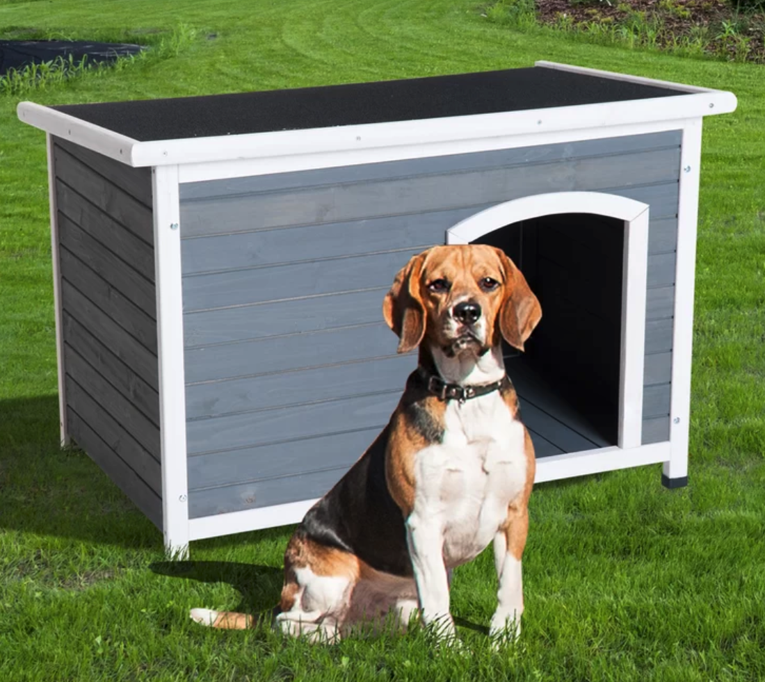 tucker-murphy-pet-fontinella-hinged-roof-outdoor-elevated-dog-house