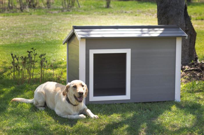 ecoflex-thermocore-dog-house