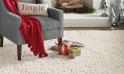 darby-home-co-murrayville-cream-area-rug